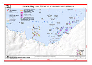 Holme Bay and Mawson - main wildlife concentrations (Helicopter Operations)