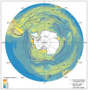 Antarctica and the southern ocean map catalogue aadc features of the southern oceanbr chlorophyll a fronts of the antarctic gumiabroncs Gallery